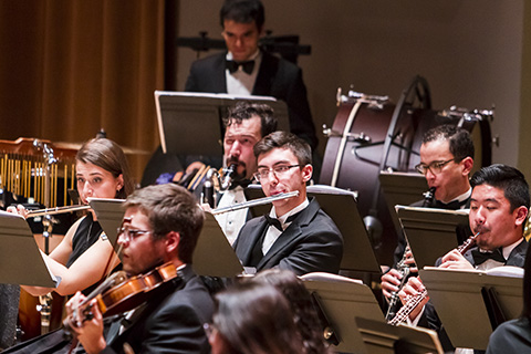 Members of an orchestra in black suits are playing their part during a performance