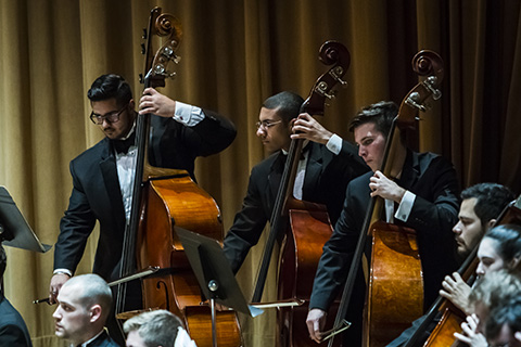 Cello players are concentrating while playing during a performance